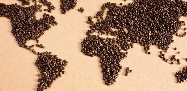 Kendinden önceki şeyhlülislamların aksine Bostanzade Mehmet Efendi kahvenin haram olmadığını, hatta faydalı olduğuna dair fetva vermiştir.